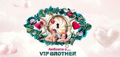 На крилете на любовта на живо на старта във VIP Brother 2017