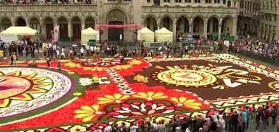 Поклон пред Кралицата на соула и цветен килим в Брюксел
